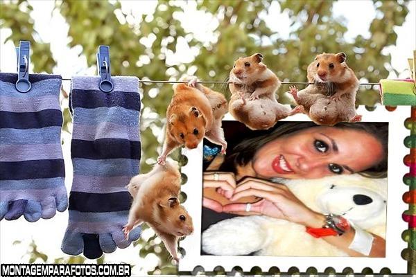 Turma de Ratinhos no Varal