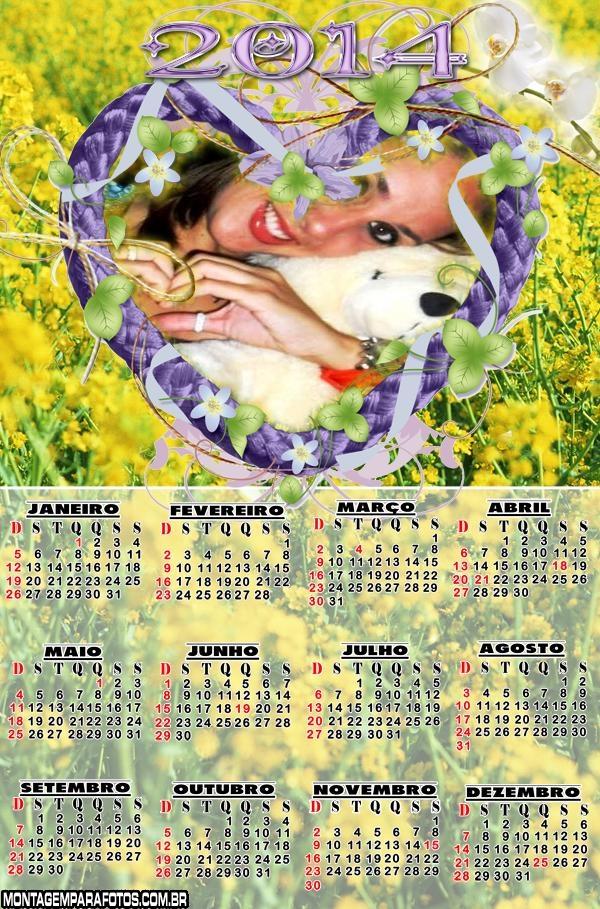 Jardim de Flores Amarelas 2014
