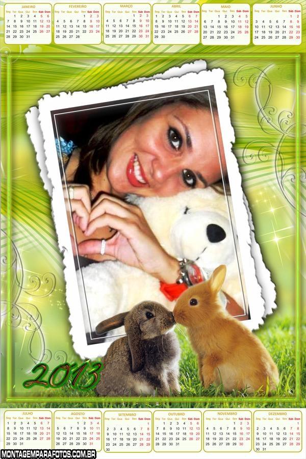 Coelhos Calendário 2013