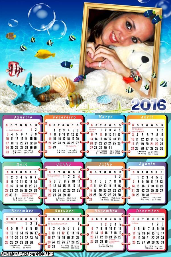 Calendário Fundo do Mar Estrela 2016