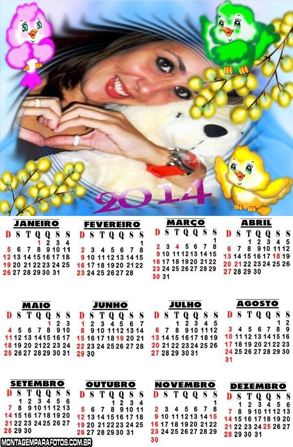 Calendário 2014 Passarinhos
