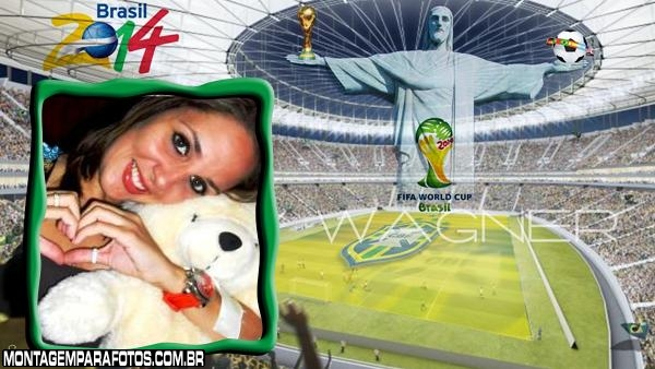 Estádio Copa 2014 Brasil