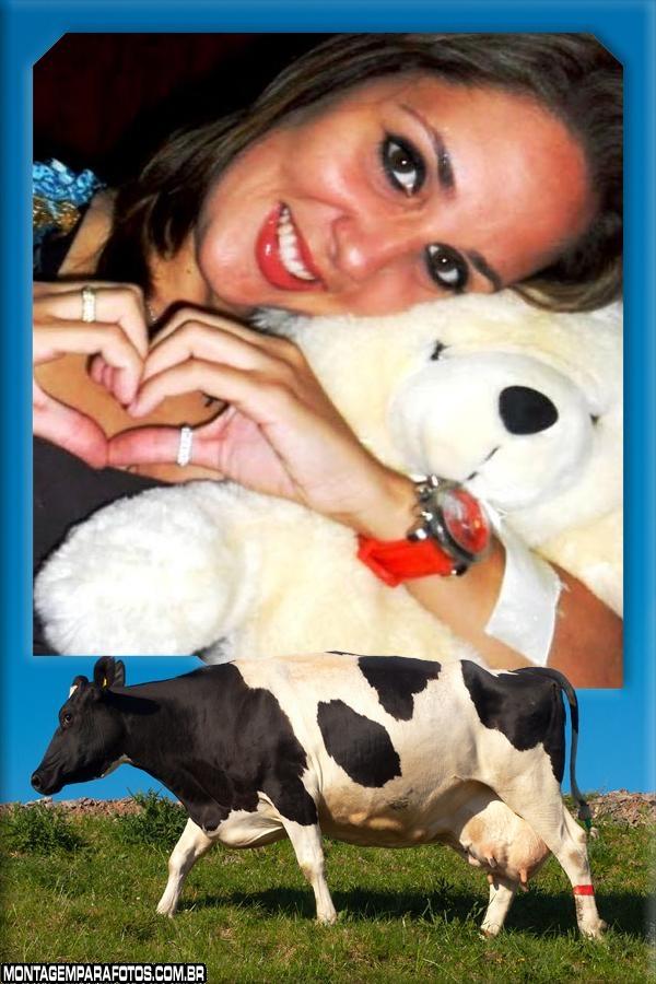 Moldura Vaca Leiteira no pasto