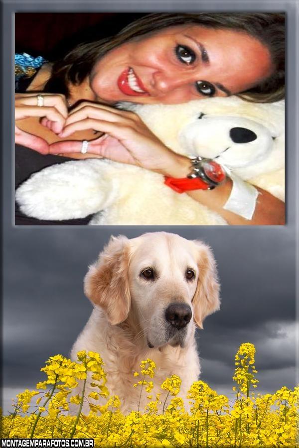 Cachorro e Flores Amarelas