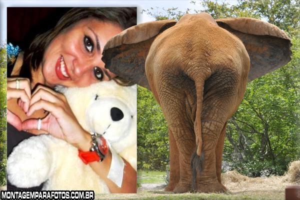 Moldura Elefante Marron