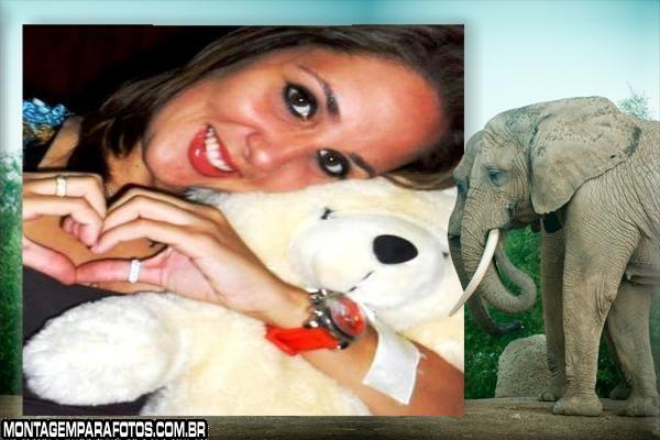 Moldura Casal Elefante Cinza