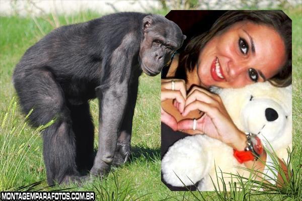 Moldura Macaco