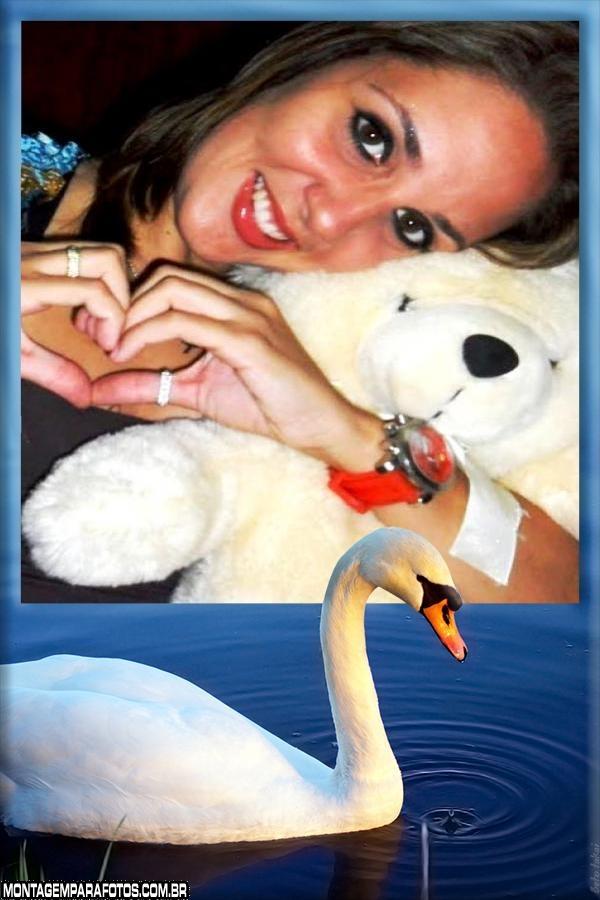 Moldura Cisne Branco