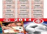 Internacional 2014 Futebol