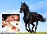 Moldura Cavalo Preto