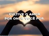 Cultive o Amor