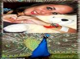 Moldura Pavão Azul Aberto
