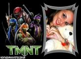 Moldura Tartarugas Ninja TMNT