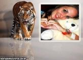 Moldura Tigre