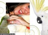 Moldura Papagaio e Calopsita