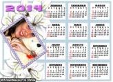 Calendários 2014 Flor Branca