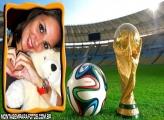 Troféu e Bola da Copa 2014