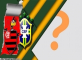Mengão Copa do Mundo