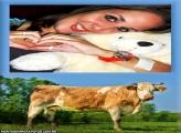Moldura Vaca Marron