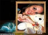 Casal Cisne Apaixonados