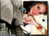 Moldura Elefante Cinza
