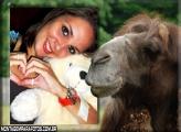 Moldura Camelo Marron