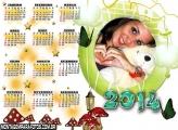 Cogumelos Calendário 2014