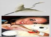 Pássaro Branco Voando