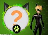 Moldura Cat Noir