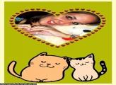 Casal de Gatos Apaixonados