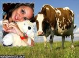 Moldura Vaca Marron e Branco