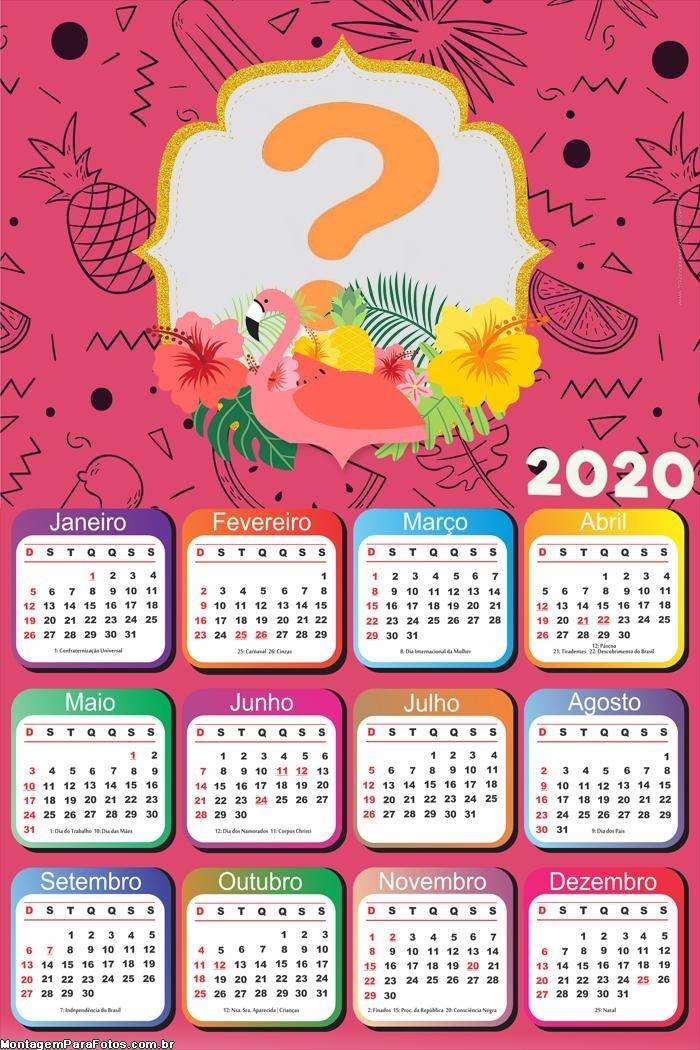 Calendário 2020 Flamingo Rosa Moldura