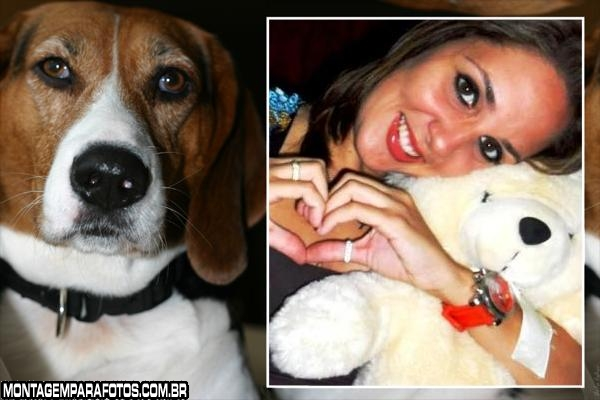 Cachorro Marron com Branco