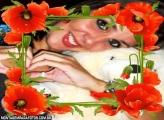 Flores Vermelhas e Joaninha