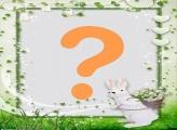 Coelho Branco com Flores Brancas