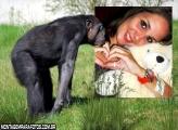 Moldura Macaco Solitário