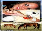 Moldura Cavalos no Aras