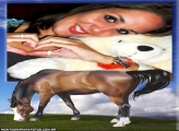 Moldura Cavalo Marron