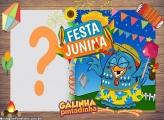 Festa Junina da Galinha Pintadinha