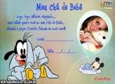 Meu Chá de Bebê do Pluto
