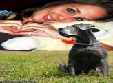 Moldura Cachorrão Preto